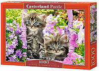 Пазл Castorland Пазлы на 1000 деталей «Котята в саду» CASTORLAND (C-104086) SKU_C-104086