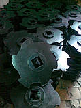 Резиновый диск фигурный, для технологического оборудования водоотделитель дисковой типа  ВДФ-6, ВДФ-3, ВДМ-15, фото 2