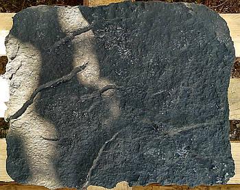 """Штамп поліуретановий для бетону і штукатурки """"Скеля"""", малий, для підлоги і стін"""