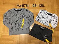 Регланы для мальчиков оптом, размеры 98-128 р, Active Sports, арт. HZ-6781., фото 1