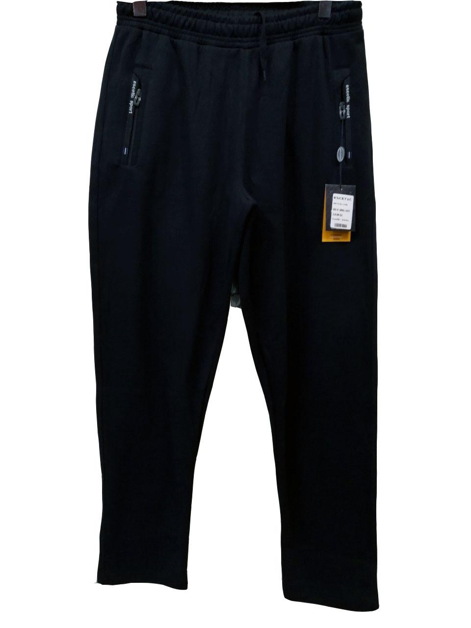 Штани теплі чоловічі Escetic зимові спортивні штани з лакосты Сині