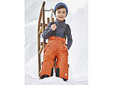 Зимние термо штаны Lupilu на мальчика 1-2 года, фото 2