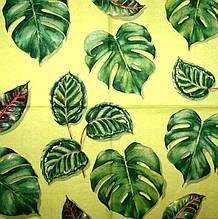 Редкие салфетки Тропические листья 2328