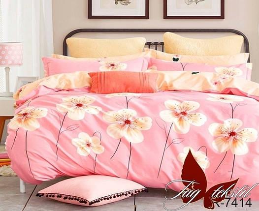 Семейный комплект постельного белья, Ранфорс, фото 2
