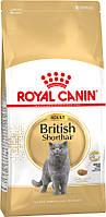 Royal Canin British Shorthair 10кг для кошек породы британская короткешерстная старше 12 месяцев