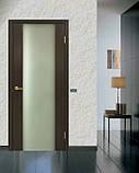Дверь межкомнатная Омис Премьера ФП, фото 2