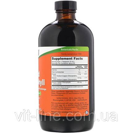 Жидкий хлорофилл Now Foods, аромат мяты, 473 мл, фото 2