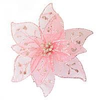Квітка пуансетії Yes! Fun напівпрозора ніжно-рожева, 18*18см
