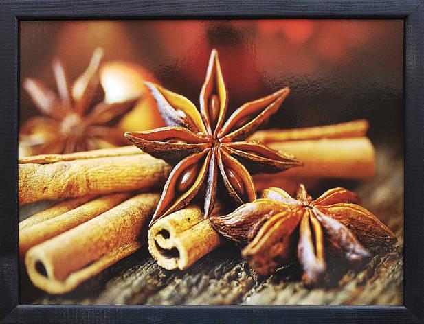 """Фотокартина в деревянной раме """"Spices 8"""", 30х40 см, фото 2"""