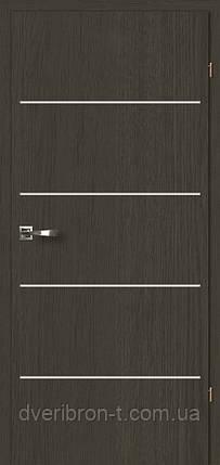 Двері Брама 2.8 дуб антрацит, фото 2