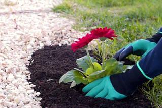 Рукавички з кігтями для саду і городу Garden Genie Gloves, фото 3