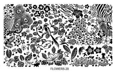 Пластина для стемпинга Flowers20