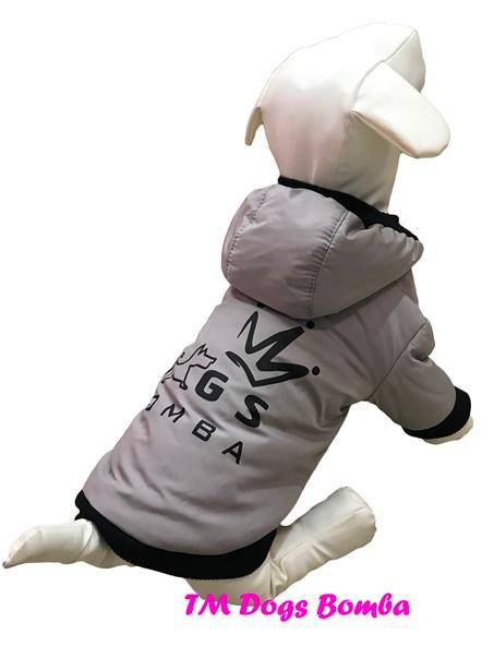 Куртка BD серая для собак DogsBomba