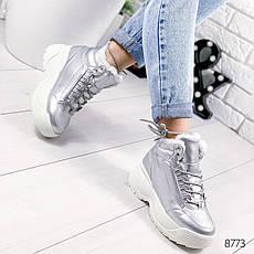Ботинки женские зимние, серебристого цвета из эко кожи 8773. Черевики жіночі. Ботинки зима, фото 2