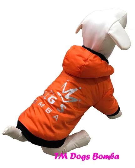 Куртка BD оранж для собак DogsBomba