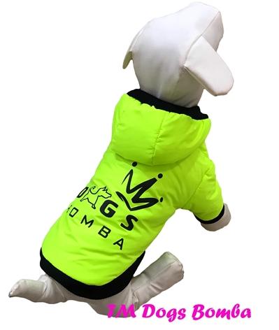 Куртка BD лимон для собак DogsBomba