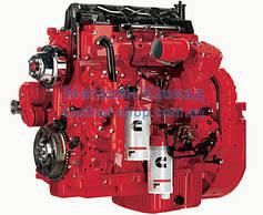 Запчасти к двигателям cummins 6c, 6ct, 6cta (8.3)