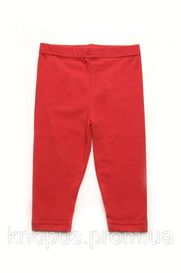 Лосины детские красные, Модный карапуз, размеры 98-128