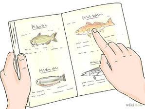 Как выбрать рыболовные снасти.