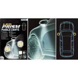 Два сверхярких белых светодиода. Используются для подсветки зоны дверей в автомобиле. Два сверхярких