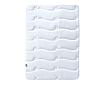Одеяло зимнее 200х220см с пропиткой Aloe Vera
