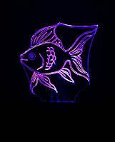 Ночник Золотая рыбка, 3d лампа светильник, разные подсветки Модель Б (7 цветов+батар+220В)