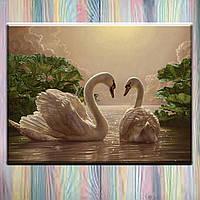 "Картина по цифрам ТМ ""Идейка"", холст на подрамнике, Птицы ""Пара лебедей"" 40*50 см, без коробки"