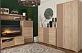 Шкаф двухдверный 900 РИО (Сокме) Киев, фото 2