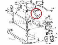 Патрубок охлаждающей жидкости верхний 1.9JTD-1.9MJTD Doblo 51755572