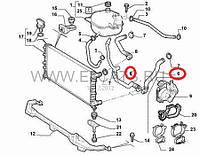 Патрубок охлаждающей жидкости нижний 1.3MJTD Doblo 51757915