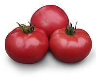 Томат розовый Асано F1 (КС 38 F1) Kitano Seeds 1000 семян