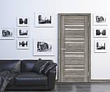 Дверь межкомнатная Омис Рино 01 G, фото 6