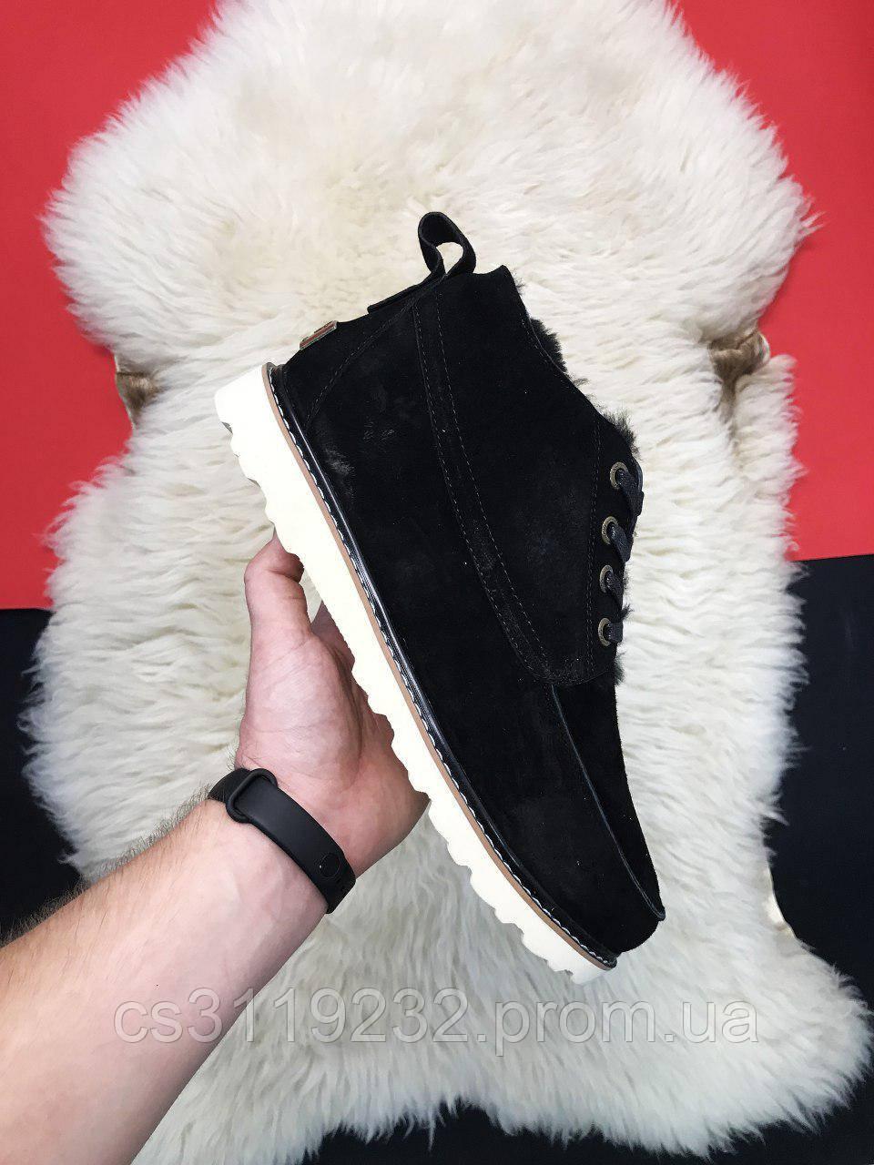 Мужские ботинки зимние UGG Classic Short (мех) (черный)