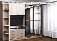 ШКАФ-КУПЕ 1200Х2400Х600мм +ПЕНАЛ с нишей под ТВ
