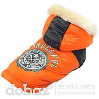 """Куртка с капюшоном """"Альпы"""", оранжевый,  размер XS  для щенков и собак мелких пород"""