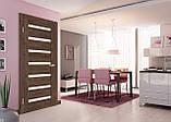 Дверь межкомнатная Омис Рино 07 G, фото 6
