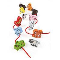 Набір тварин Hape (E0901)