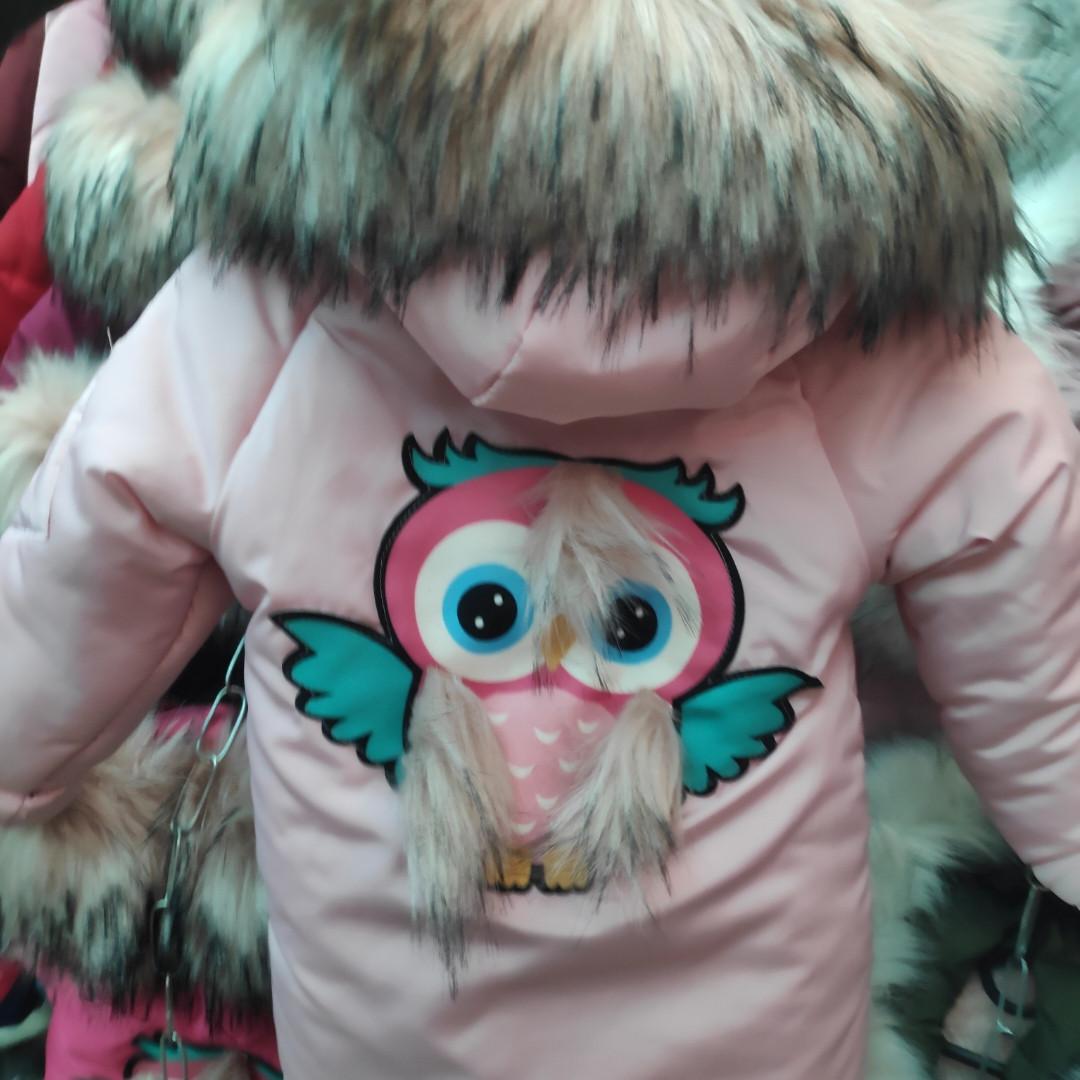 Зимняя куртка на девочку Совушка (рр.92-128)