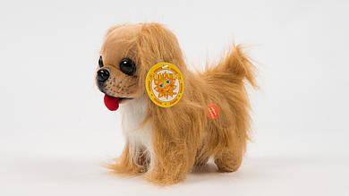 Мягкая игрушка Собака Пекинес.Ходит.Лает.На батарейках