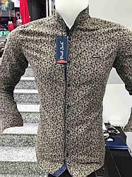 Теплая кашемировая рубашка Paul Jack стойка