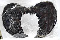 Крылья ангела черные большие 60см