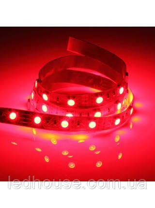 Светодиодная лента Красная SMD 5050 60 LED/мт. IP20