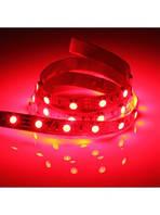 Светодиодная лента Красная SMD 5050 60 LED/мт. IP20, фото 1
