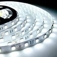 Светодиодная лента 6000к SMD 5050 60 LED/мт. IP20, фото 1