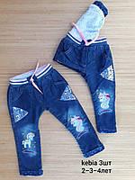 Джинсы на резинке теплые для девочек 2-4 лет .Турция .Оптом