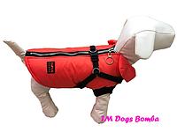 Жилет с шлеей оранж для собак DogsBomba