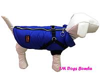 Жилет с шлеей электрик для собак DogsBomba