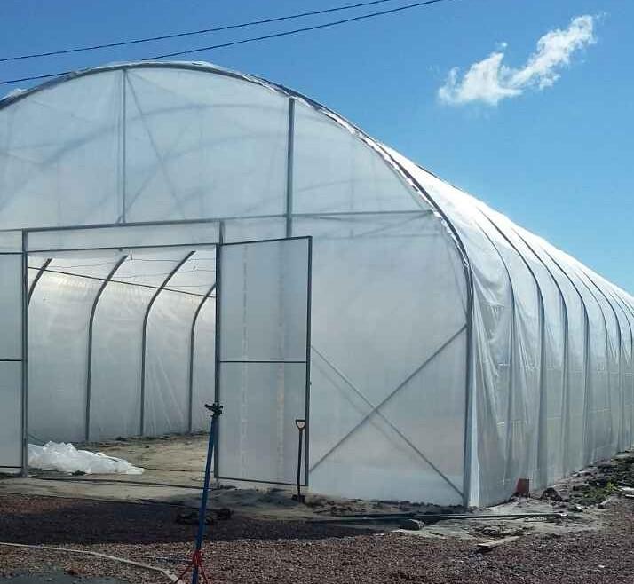 Пленка тепличная  12х50м, 180мкм,  UV10 - 10 сезонов