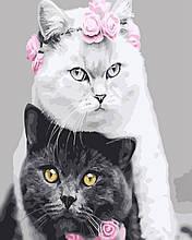 Картина по Номерам 40x50 см. Белая кошка,чёрный кот Rainbow Art