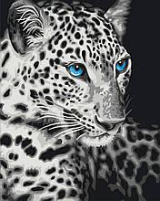 Картина по Номерам 40x50 см. Голубоглазый барс Rainbow Art